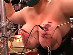 Huge tits get electro needles